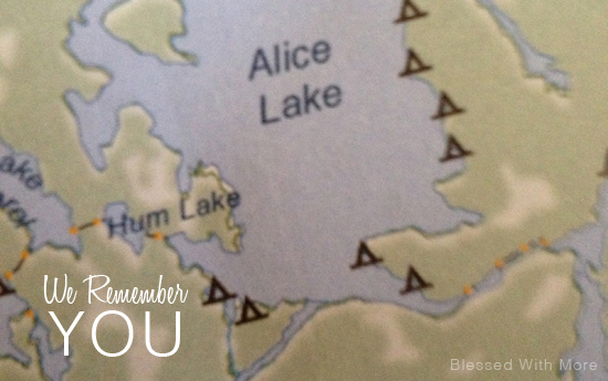 We Remember You : Alice Lake
